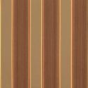 davidson-redwood