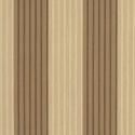 elliott-wren